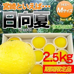 日向夏2.5kg Mサイズ 15〜18玉 宮崎県日南市直送|nichinan-tv