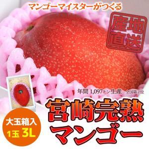 ご贈答用 6月発送 宮崎完熟マンゴー 日南市マンゴー町 マンゴーマイスターがつくる 大玉3Lサイズ 1個入|nichinan-tv