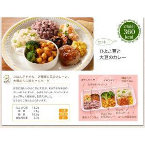 ウーディッシュお試し2食コース【冷凍】ニチレイフーズ|nichireifoods|04