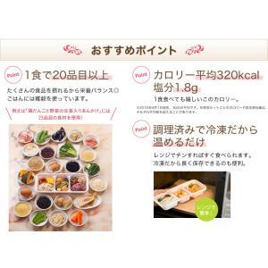 ウーディッシュお試し2食コース【冷凍】ニチレイフーズ|nichireifoods|06