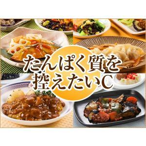 たんぱく質Cコース 2018年秋冬【冷凍】 ニチレイフーズ nichireifoods