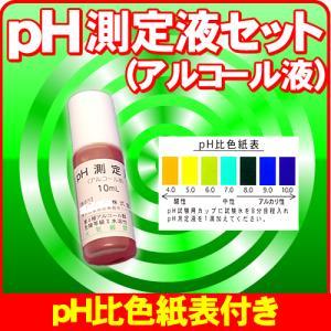 次亜塩素酸水 確認用として  pH試薬 pH測定液 (アルコール液) PH2.7 以下の強酸性水 塩...