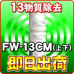 1月24日まで FW-13CM フジ医療器 純正カートリッジ トレビFW-507専用 ---1891---|nickangensuisosui