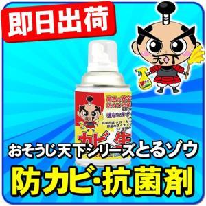 安心 安全 防カビ 抗菌 スプレー缶タイプ プロ仕様(強力)(最強) カーエアコン臭用 ワンプッシュ...