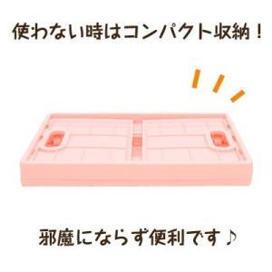 (当店限定復活) すみっコぐらし キャラコンテナ SG-5519201PK/SG-5519202BL|nico-marche|02
