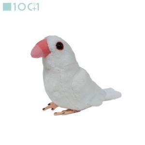 ☆ぬいぐるみ101 鳥のぬいぐるみ シロブンチョウ SM141|nico-marche