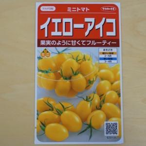 ミニトマト 種 イエローアイコ サカタ交配 トマト 種子 サカタのタネ 追跡可能メール便選択可