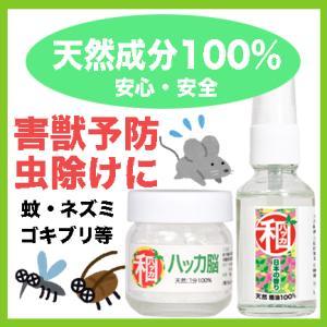 ハッカ油 ハッカ脳 薄荷結晶 クリスタル 和種ハッカ はっか 虫除け 芳香剤 匂い消し 瓶入りなので...