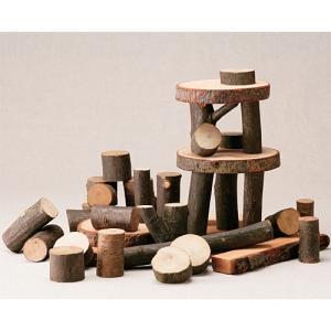 積み木 木のおもちゃ 2歳 3歳 4歳 子供 誕生日プレゼント ツリーブロックス|nicoly