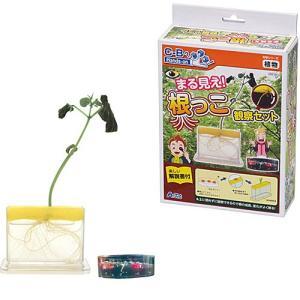 科学 おもちゃ 教育 教材工作 実験 キット セット 小学生 子供 まる見え!根っこ観察セット|nicoly