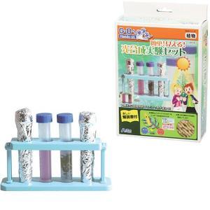 科学 おもちゃ 教育 教材 知育 夏休み 工作 実験 キット セット 小学生 小学校 子供  短時間...
