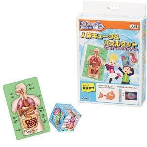 科学 おもちゃ 教育 教材工作 実験 キット セット 小学生 子供 人体キューブ&パズルセット 遊んで学べるからだのしくみ|nicoly