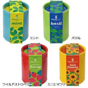 カラフルな陶器製の缶型ポットで植物を育てよう♪ 深さのある容器は植物にとって根を張りやすく初心者でも...
