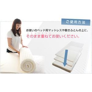 ブリヂストン 「D-sleep」ディースリープマット シングル 腰痛対策 【送料無料】|niconicogenkimura|02