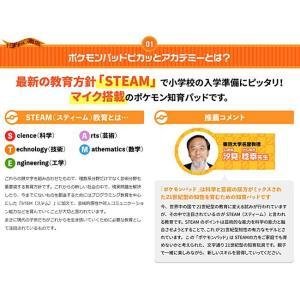 【お得なセット】 ポケモンパッド ピカッとアカデミー + ACアダプターTYPE5U nigiwaishouten 11