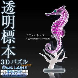 3Dパズル『DualLayerPuzzle 透明標本パズル (タツノオトシゴ)』 nigiwaishouten