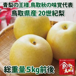 青梨の王様 鳥取秋の味覚代表 鳥取県産20世紀梨 5kg 12〜18玉入り|nihonkai-ichiba