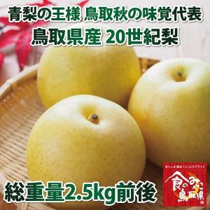 青梨の王様 鳥取秋の味覚代表 鳥取県産20世紀梨 2.5kg 6〜10玉入り|nihonkai-ichiba