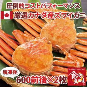 コスパの高さが魅力!厳選カナダ産ズワイガニ600g前後×2枚(かに/カニ/蟹)|nihonkai-ichiba