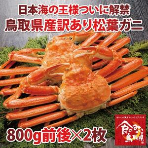 訳あり特上松葉ガニ (茹で)大サイズ2枚(活カニ時2枚で1.6kg前後)1落ち程度 (かに/カニ/蟹) |nihonkai-ichiba