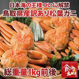 訳あり 特上松葉ガニ(茹で)総重量1kg前後(活カニ時)(2〜4枚)(かに/カニ/蟹) nihonkai-ichiba
