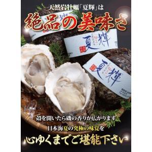 鳥取県産 ブランド天然岩がき 夏輝 約2kg詰め (岩ガキ/岩牡蠣/カキ) 6月初旬から中旬頃より順次発送|nihonkai-ichiba|05