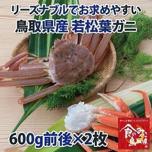 リーズナブルでお求めやすい!鳥取県産 訳あり若松葉ガニ1.2kg前後(1枚600g前後×2枚) 活と茹でをお選び頂けます(かに/カニ/蟹)|nihonkai-ichiba