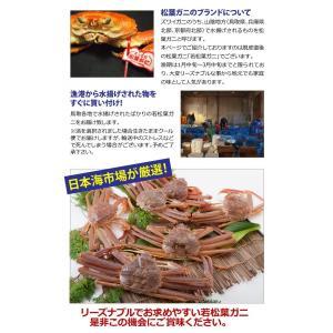 リーズナブルでお求めやすい!鳥取県産 訳あり若松葉ガニ3kg前後(1枚600g前後×5枚) 活と茹でをお選び頂けます(かに/カニ/蟹) nihonkai-ichiba 06