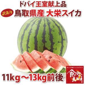 訳あり ドバイ王室献上品! 鳥取県産 ジャンボ大栄スイカ 1...