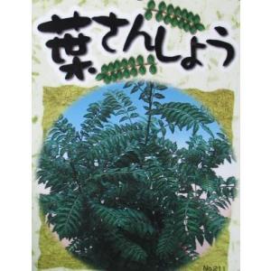 葉山椒(葉さんしょう):果樹苗 ハサンショウ