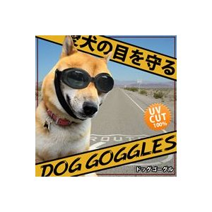 お試し価格 犬用ゴーグル 犬用サングラス ワンちゃん 拡散防止レンズ ゴムバンド 愛犬とのドライブやツーリングに♪ 愛犬の目を紫外線やゴミから守る |nihontuuhan