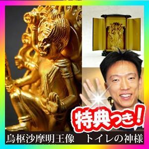 トイレの神様 烏枢沙摩明王像 うすさまみょうおうぞう 24金メッキ 風水 開運 金運 お守り トイレ神様 便所神様 便所の神様|nihontuuhan