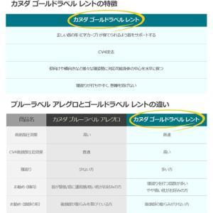 KANUDA カヌダ ゴールドラベル レント枕 シングルセット ヘッドナップ付き カヌダ枕 まくら マクラ 枕 nihontuuhan 09