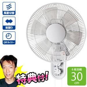 壁掛け扇風機  壁かけ扇風機  ファン  壁掛け式扇風機  風量3段階切替 首振り 3時間切タイマー|nihontuuhan