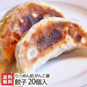 新潟がんこ屋 こだわりのジャンボ餃子 20個入り にんにく不使用/送料無料|niigata-shop
