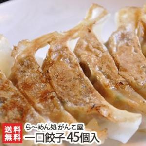 新潟がんこ屋 こだわりの一口餃子 45個入り にんにく不使用/送料無料|niigata-shop