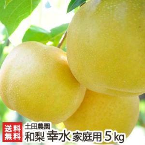 新潟産 梨 幸水 家庭用5kg 土田農園/送料無料|niigata-shop