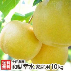 新潟産 梨 幸水 家庭用10kg 土田農園/送料無料|niigata-shop