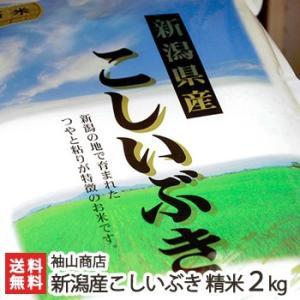 30年度米 新潟産こしいぶき 精米2kg 袖山商店/米屋の蔵出し米/ギフト プレゼント お祝い 贈り物 のし無料 送料無料|niigata-shop