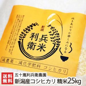 30年度米 新潟産 炊きあがりが楽しみになるコシヒカリ 精米25kg(25kg×1)五十嵐利兵衛農園/お中元ギフト/のし無料/送料無料|niigata-shop
