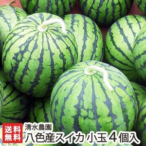 南魚沼八色産スイカ 小玉4個入り(1個2.3kg前後) 7月中旬〜発送/ギフトに!/送料無料|niigata-shop