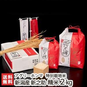 30年度米 新潟の新ブランド米「新之助」(特別栽培米)精米2kg アグリーホンマ/送料無料|niigata-shop