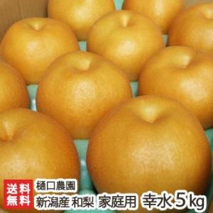 新潟県産 梨 家庭用 幸水 5kg(10〜14玉) 樋口農園/送料無料|niigata-shop