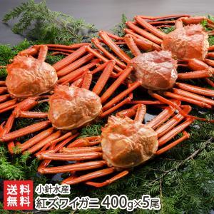 日本海産 紅ズワイガニ 400g×5尾 新潟の蟹屋 小針水産...