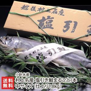村上名産 塩引き鮭「まるごと1本」中サイズ ※仕上り約1.8kg (3枚卸対応可)小針水産/お中元ギフト/のし無料/送料無料|niigata-shop
