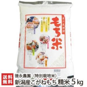 令和元年度新米 新潟産 特別栽培米 こがねもち 精米5kg 徳永農園 もち米/ギフト お祝い 贈り物 のし無料 送料無料|niigata-shop