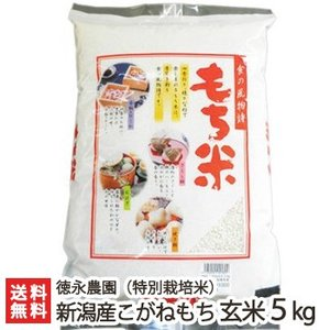 令和元年度新米 新潟産 特別栽培米 こがねもち 玄米5kg 徳永農園 もち米/ギフト お祝い 贈り物 のし無料 送料無料|niigata-shop