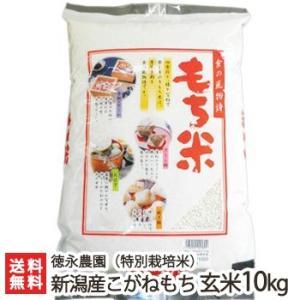令和元年度新米 新潟産 特別栽培米 こがねもち 玄米10kg 徳永農園 もち米/ギフト お祝い 贈り物 のし無料 送料無料|niigata-shop