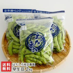 新潟県産 朝採り枝豆 早生豆 2kg(250g×8袋)/ギフト プレゼント お祝い 贈り物 のし無料 送料無料|niigata-shop