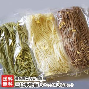 新潟コシヒカリと季節の野菜を使った三色米粉麺(3箱セット)/グルテンフリー/米粉パスタ/送料無料|niigata-shop